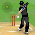 Smashing Cricket – a cricket game like none other 3.0.2
