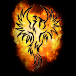 Darkness and Flame (free to play)2.0.1.923.59
